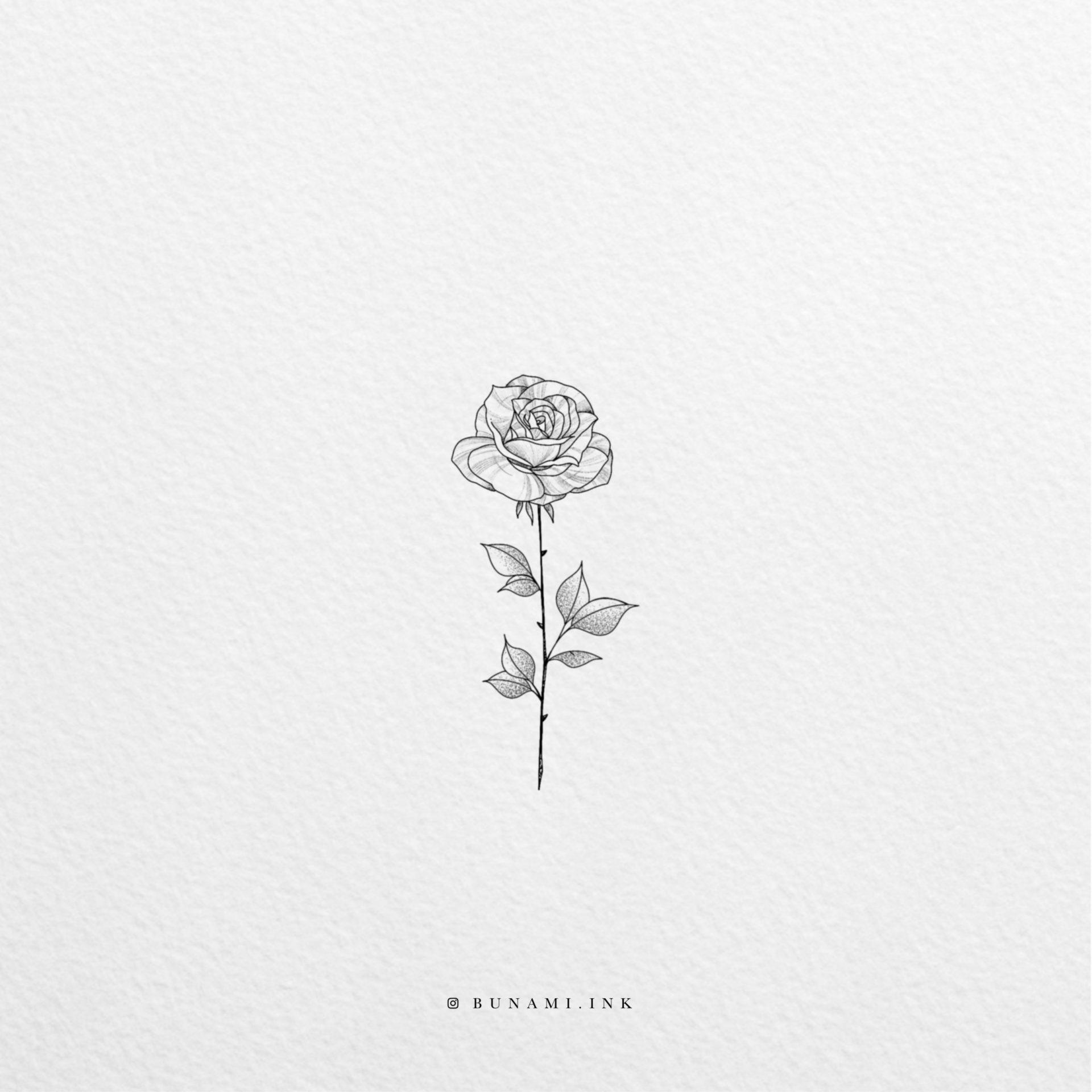 rose_2019-12-11